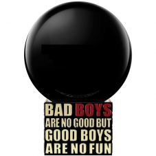 "Парфюмерная вода ""Bad Boys Are No Good But Good Boys Are No Fun"", 100 ml"
